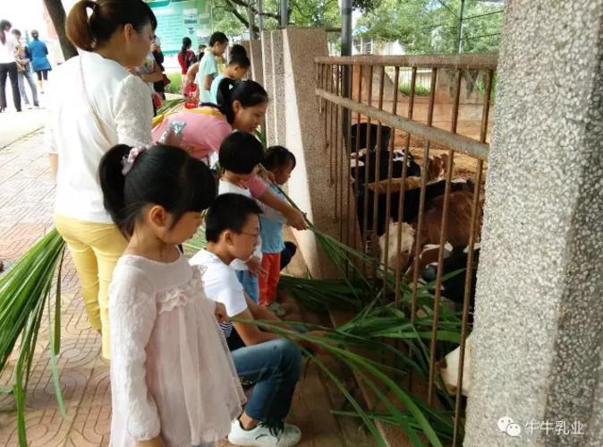 """热烈庆祝牛牛乳业成为现代牧场通过农业部审核的""""休闲观光牧场""""江西省唯一_一家观光牧场!"""